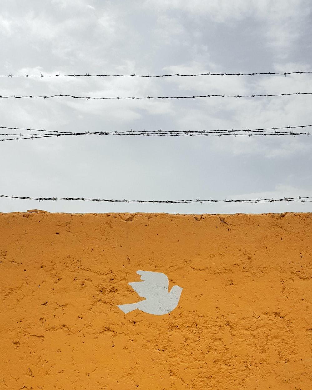 orange and white bird graphic wall during daytime