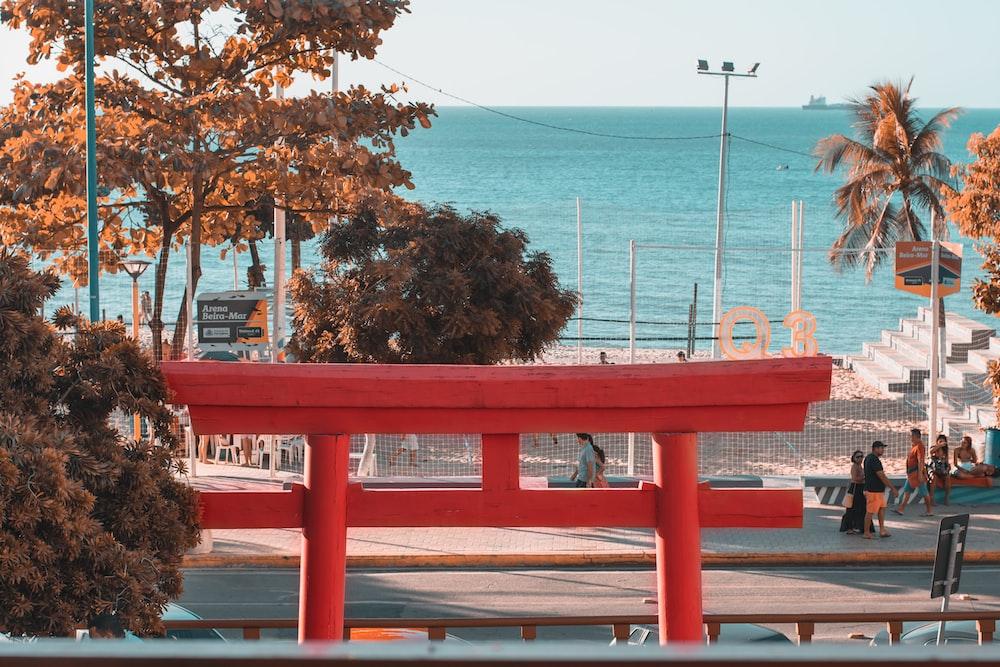 people walking near sea at daytime