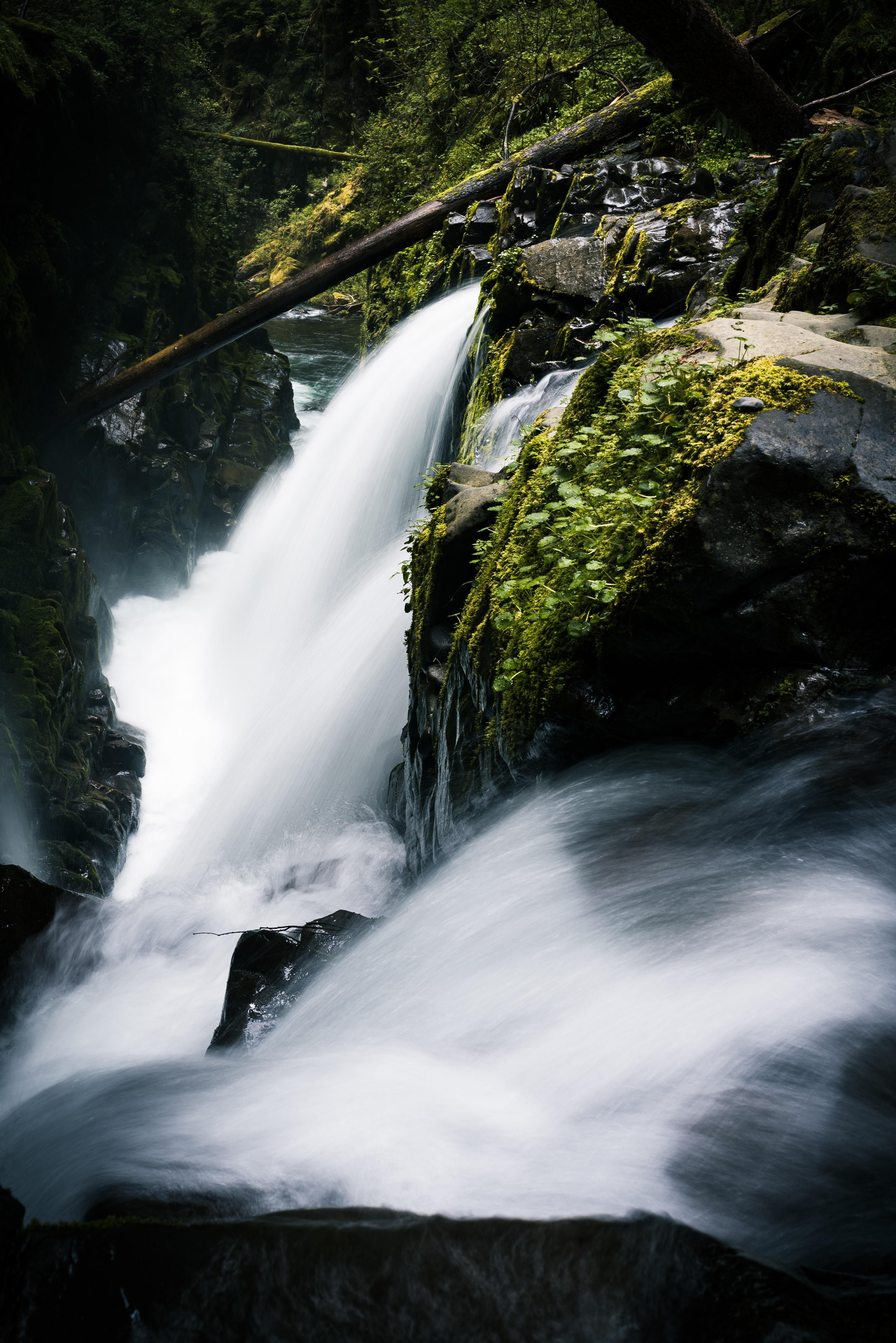 waterfall beside tocks