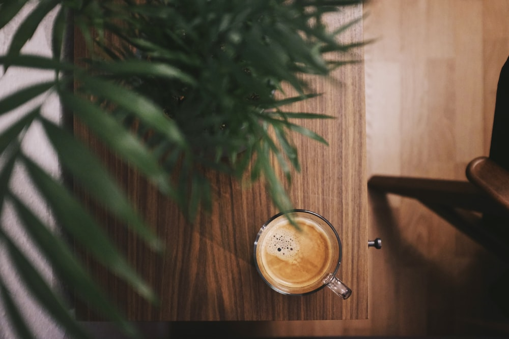 half-filled coffee in clear glass mug beside plant on brown table