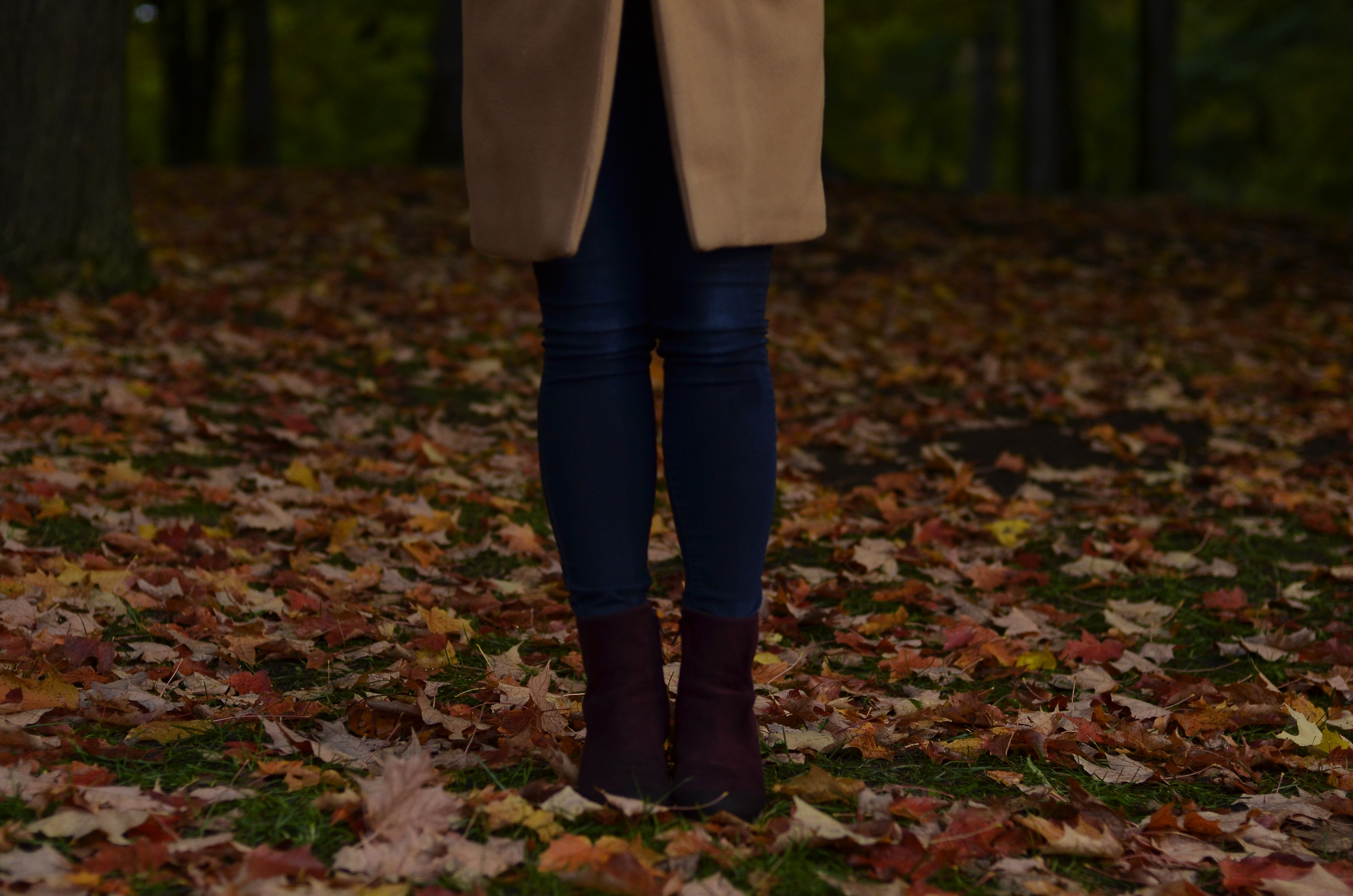 person walking on ground surrounded by dried leaves