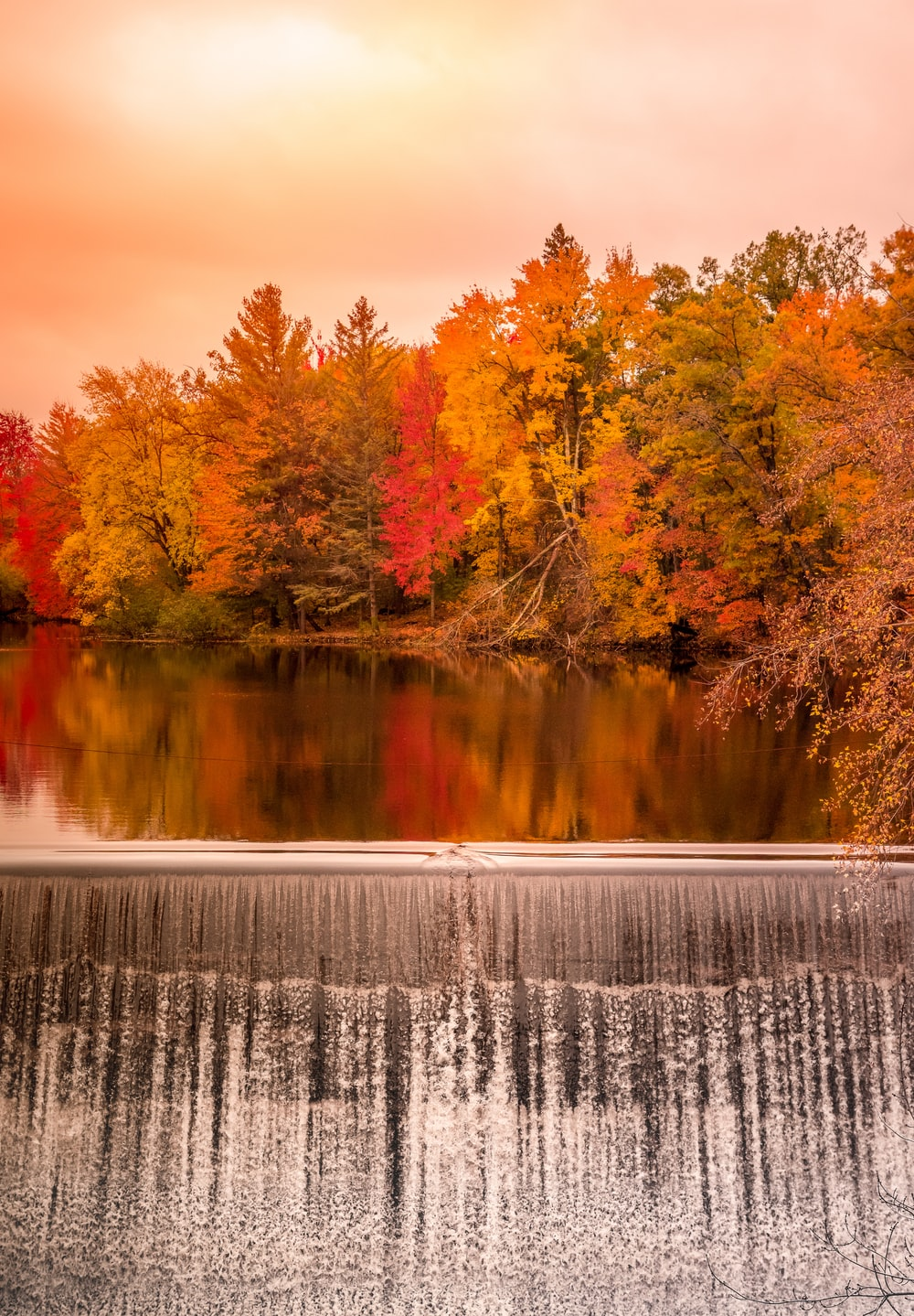 dam among autumn color trees