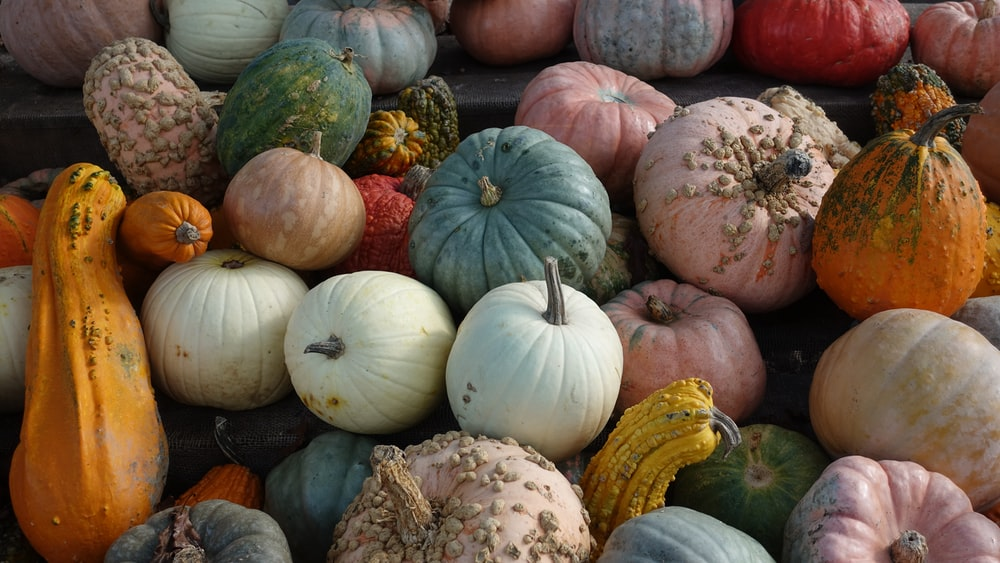 gourds piled up on board