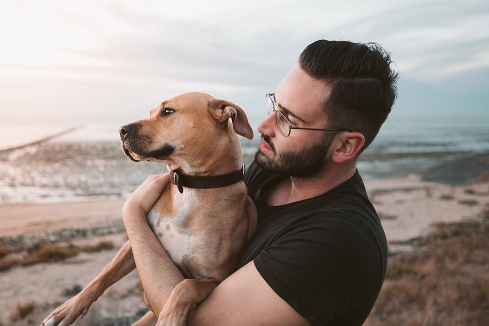 man holding a brown dog
