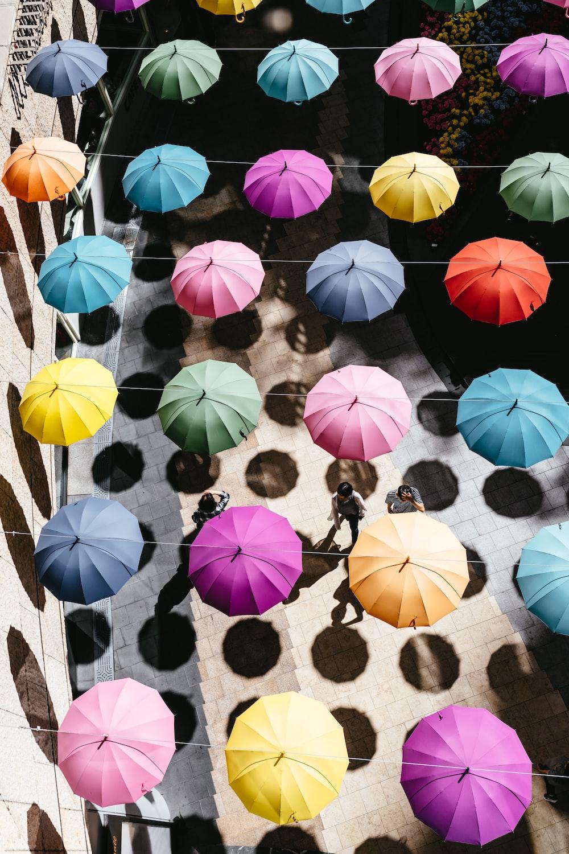 assorted-color umbrella lot