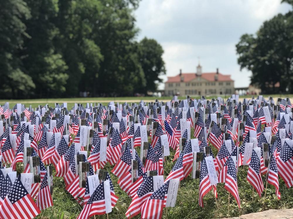 U.S.A. flaglets on grass field
