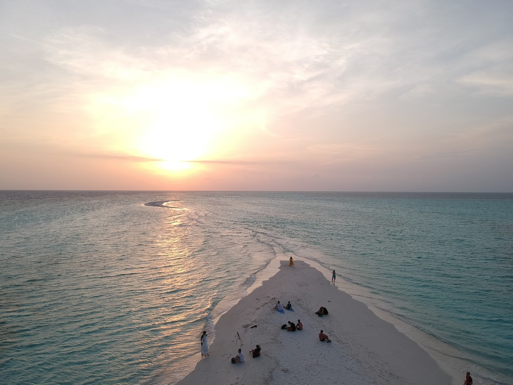 aerial photography of people on seashore during sunset