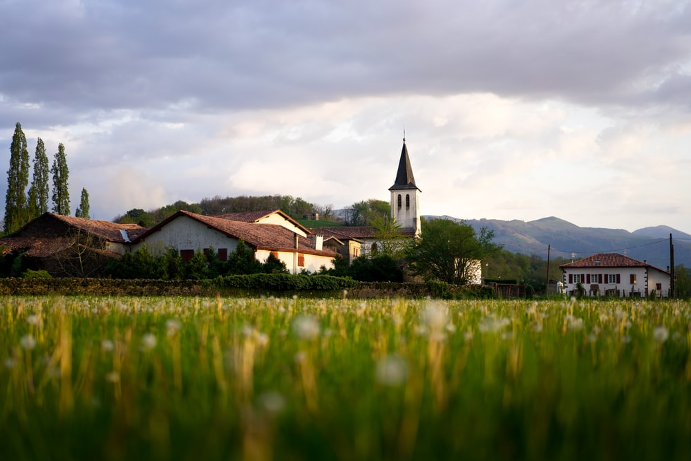 green grass field and houses during daytime