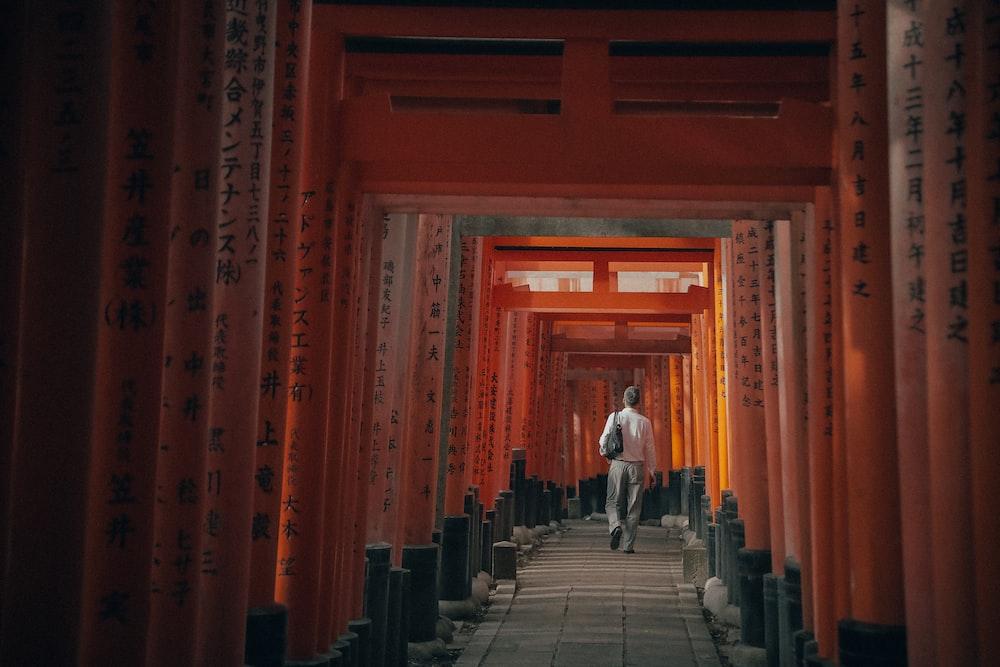 person walking between torii