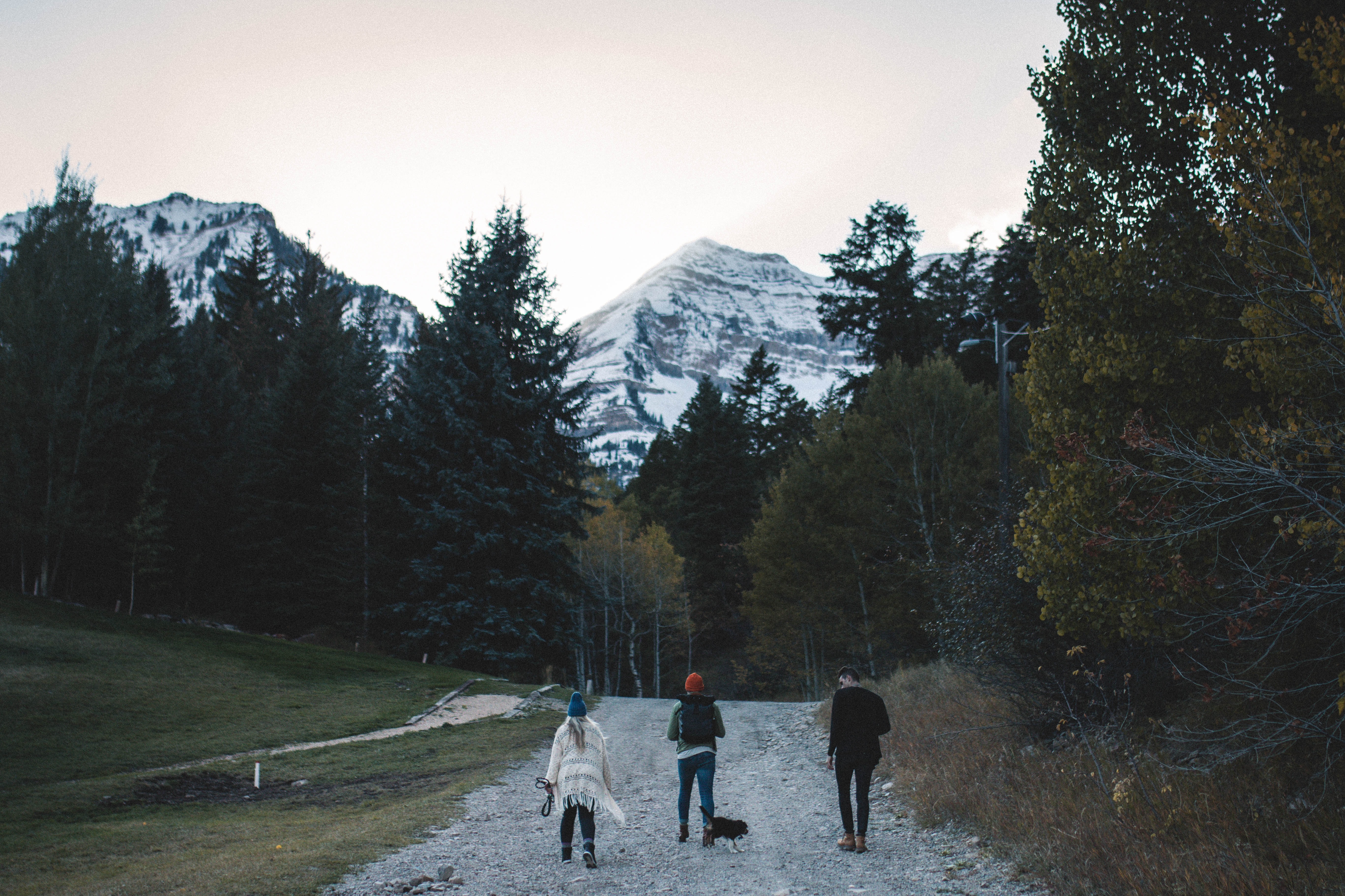 landscape photography of three person's walking on pathway