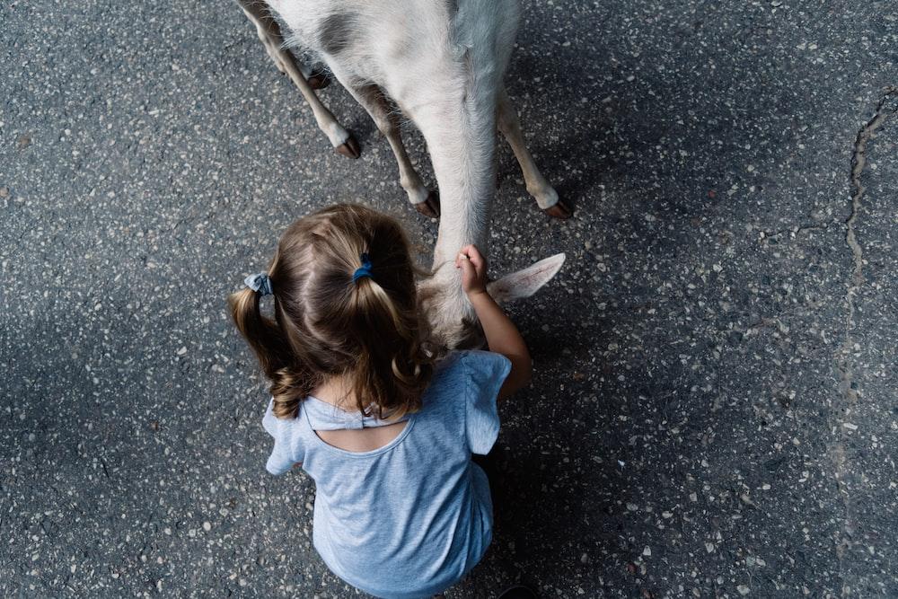 girl holing white goat