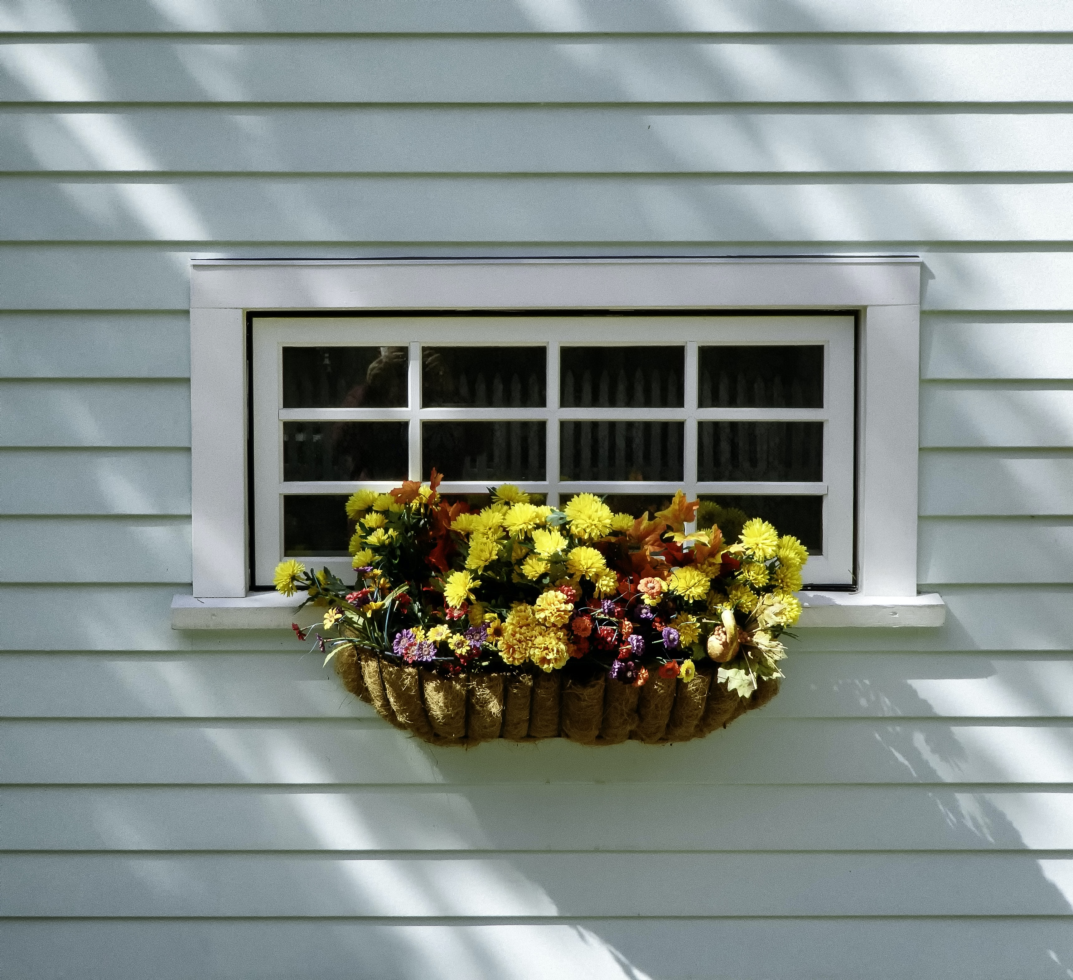assorted flowers on window