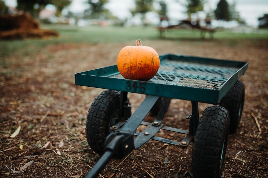 orange pumpkin on green metal trailer