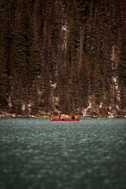 people on kayak on body of water