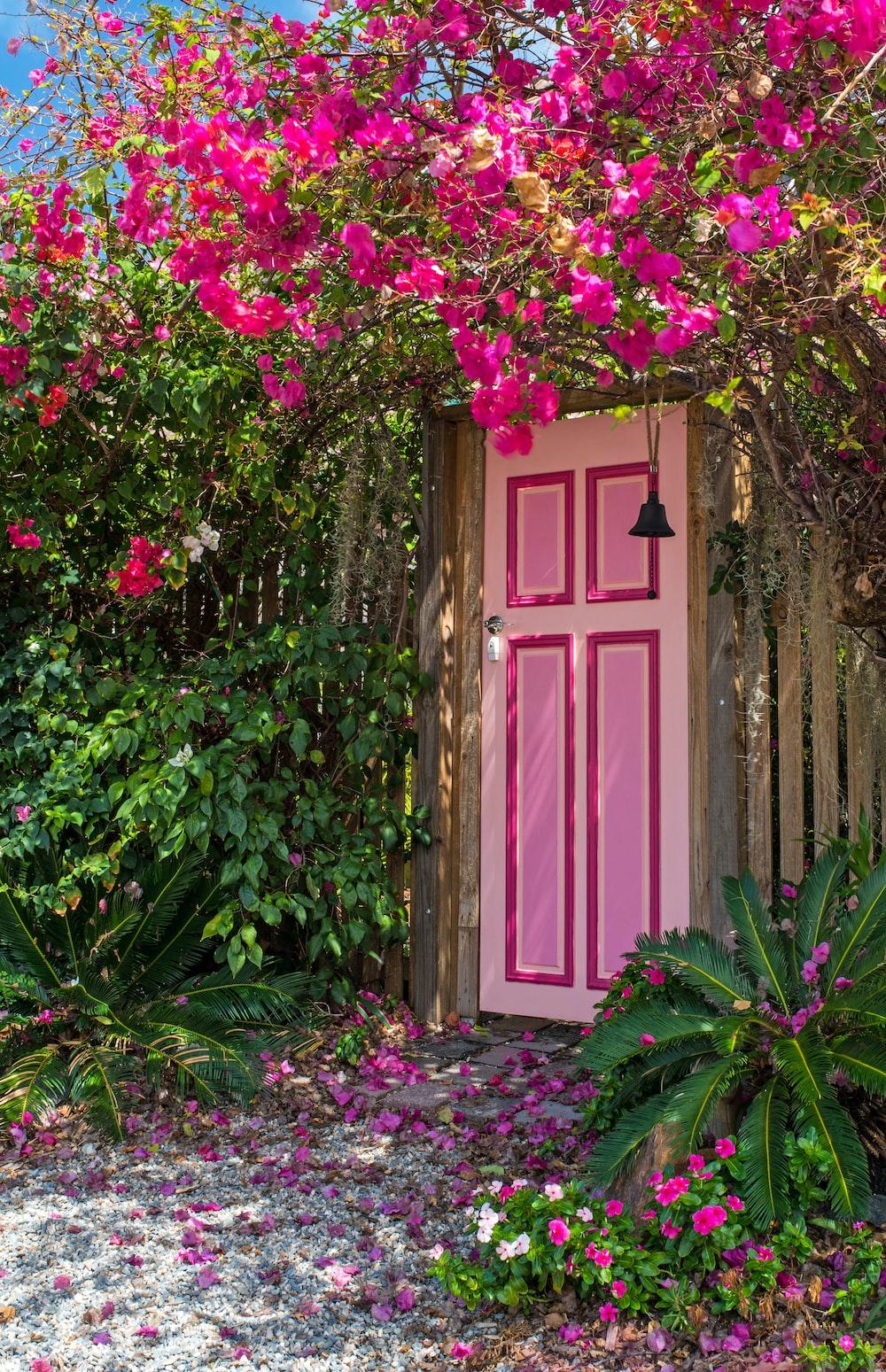 pink wooden door surround by flowers