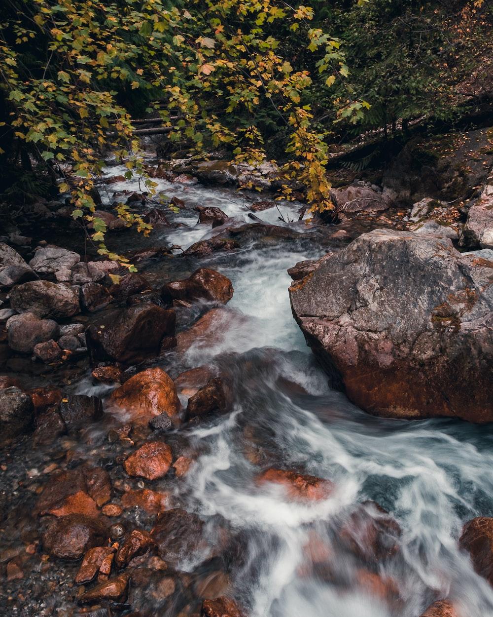 rocks on water stream