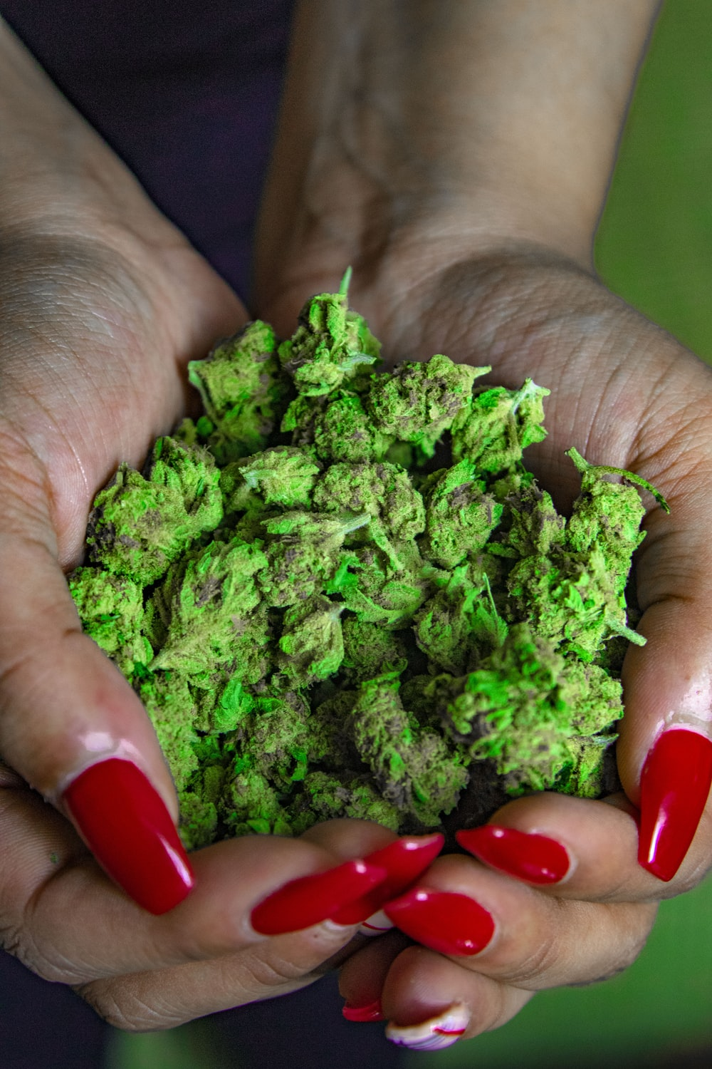 green kush on human hands