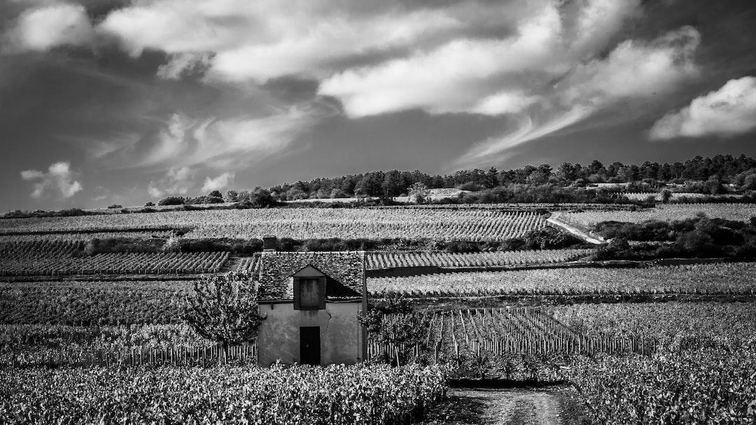 Stone House in Vineyard