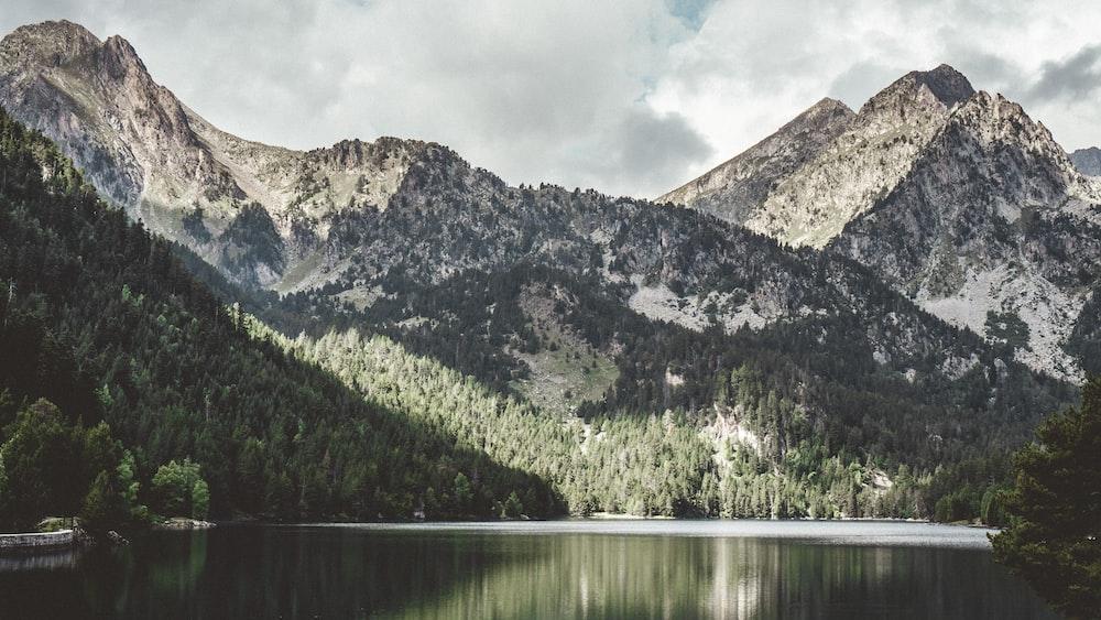 pine tree covered mountain near lake during daytime