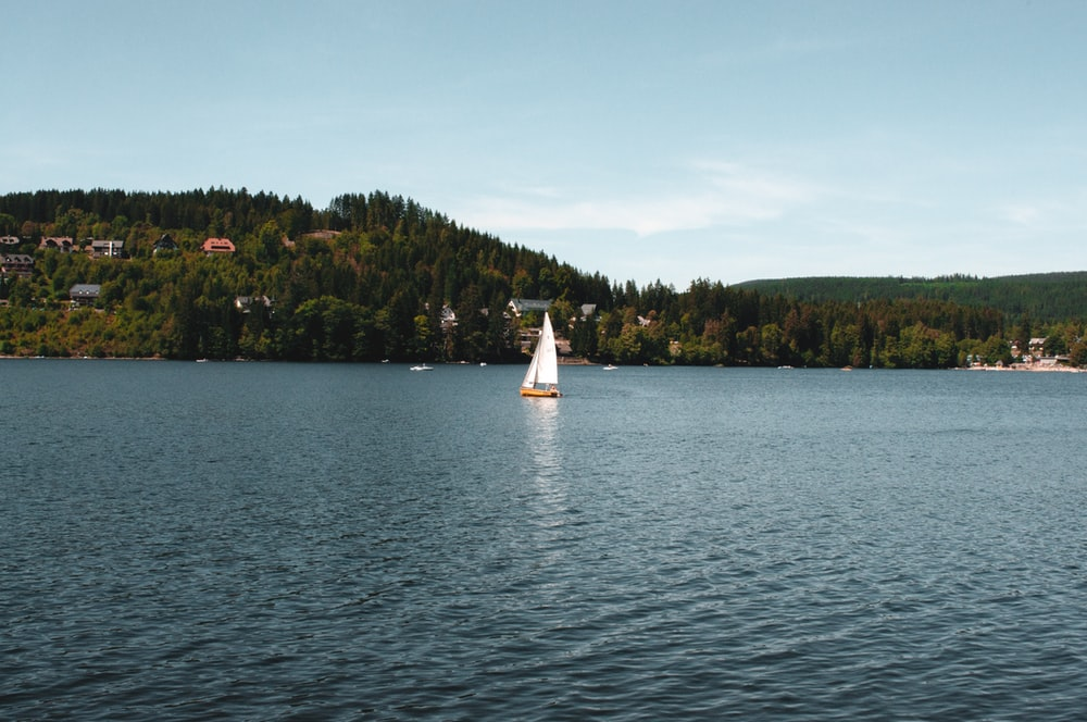 gray and white sailboat on body of water