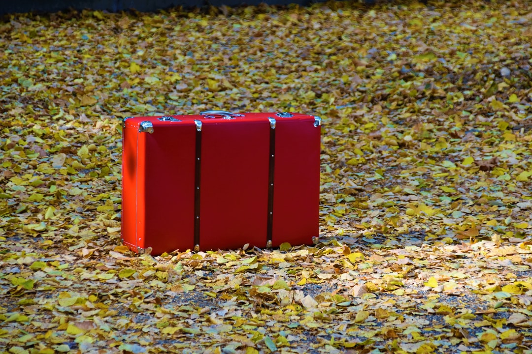 Red Suitcase in the autumns leaves