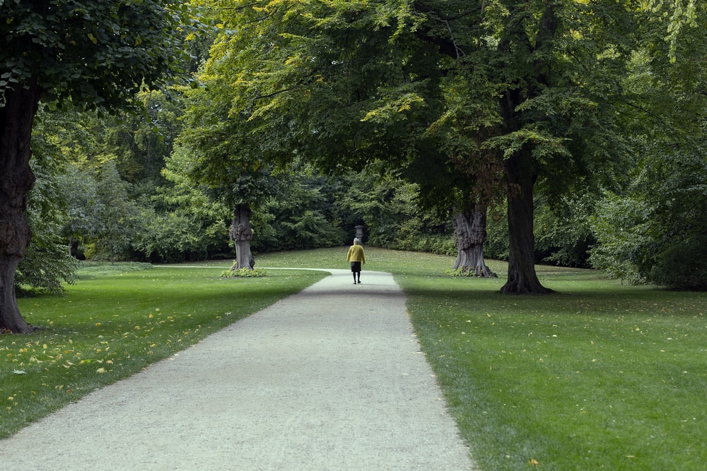 person walking along road in a park