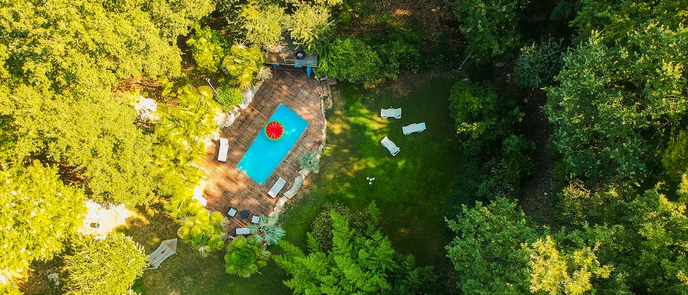 topview of pool surrounded by trees during daytime
