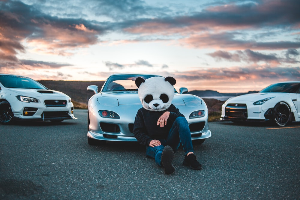 person wearing panda bear mask sitting beside silver vehicle