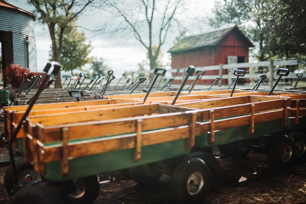 lined green-and-brown carts in barn