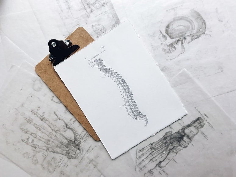 How Back Pain Starts ?