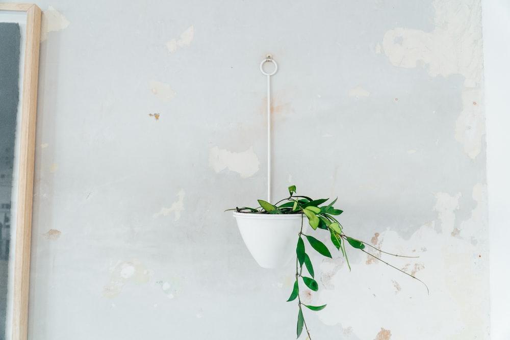 white hanging pot