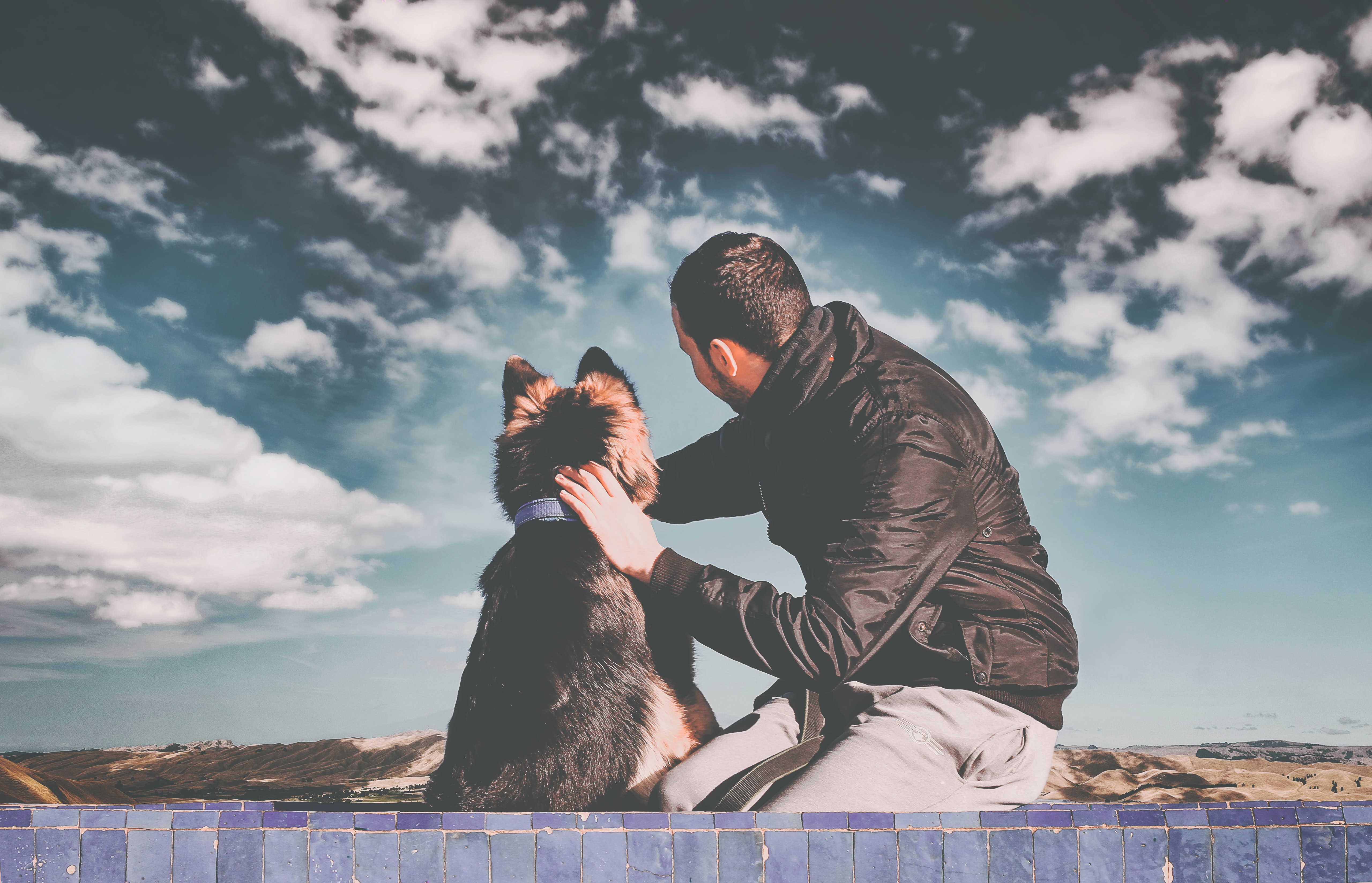 man touching dogs head with white clouds in background