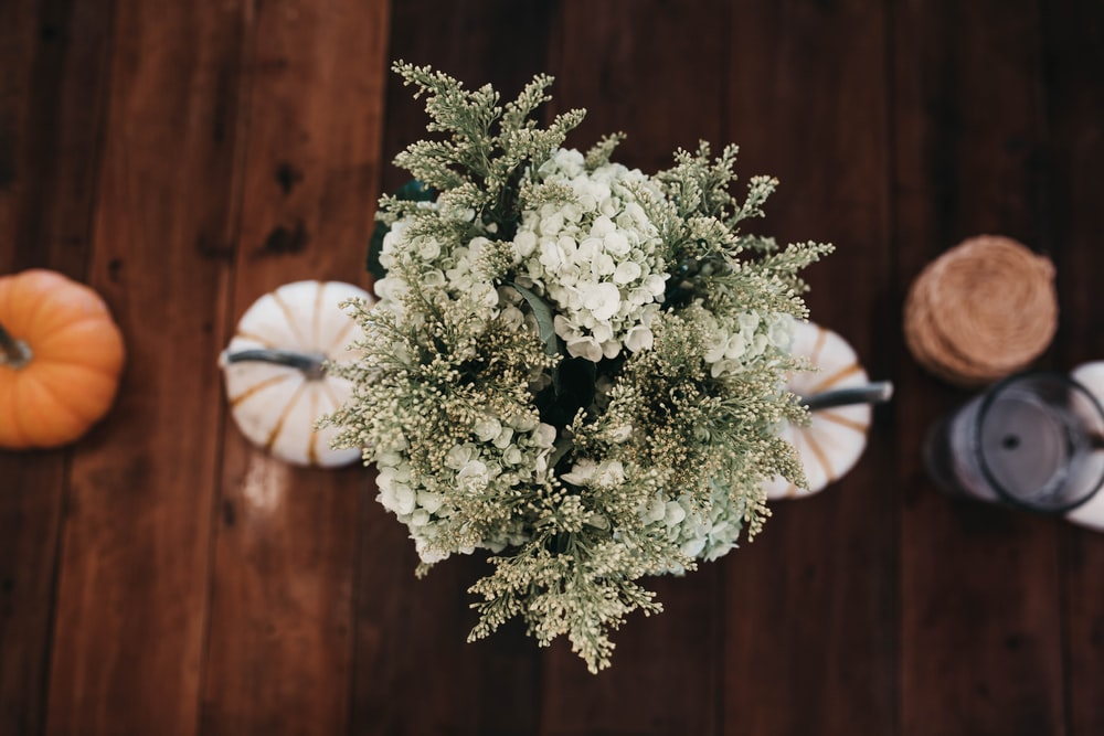 white and green plant tabletop decor on brown wooden surface