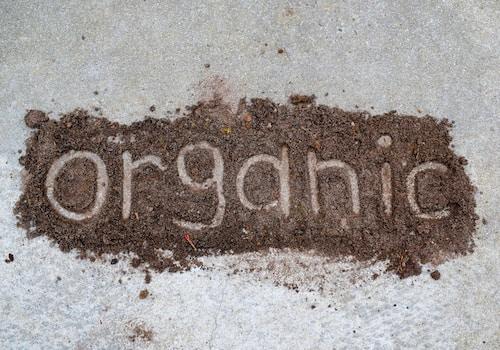organic marijuana soil