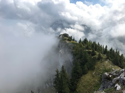 Chilling in the Alps