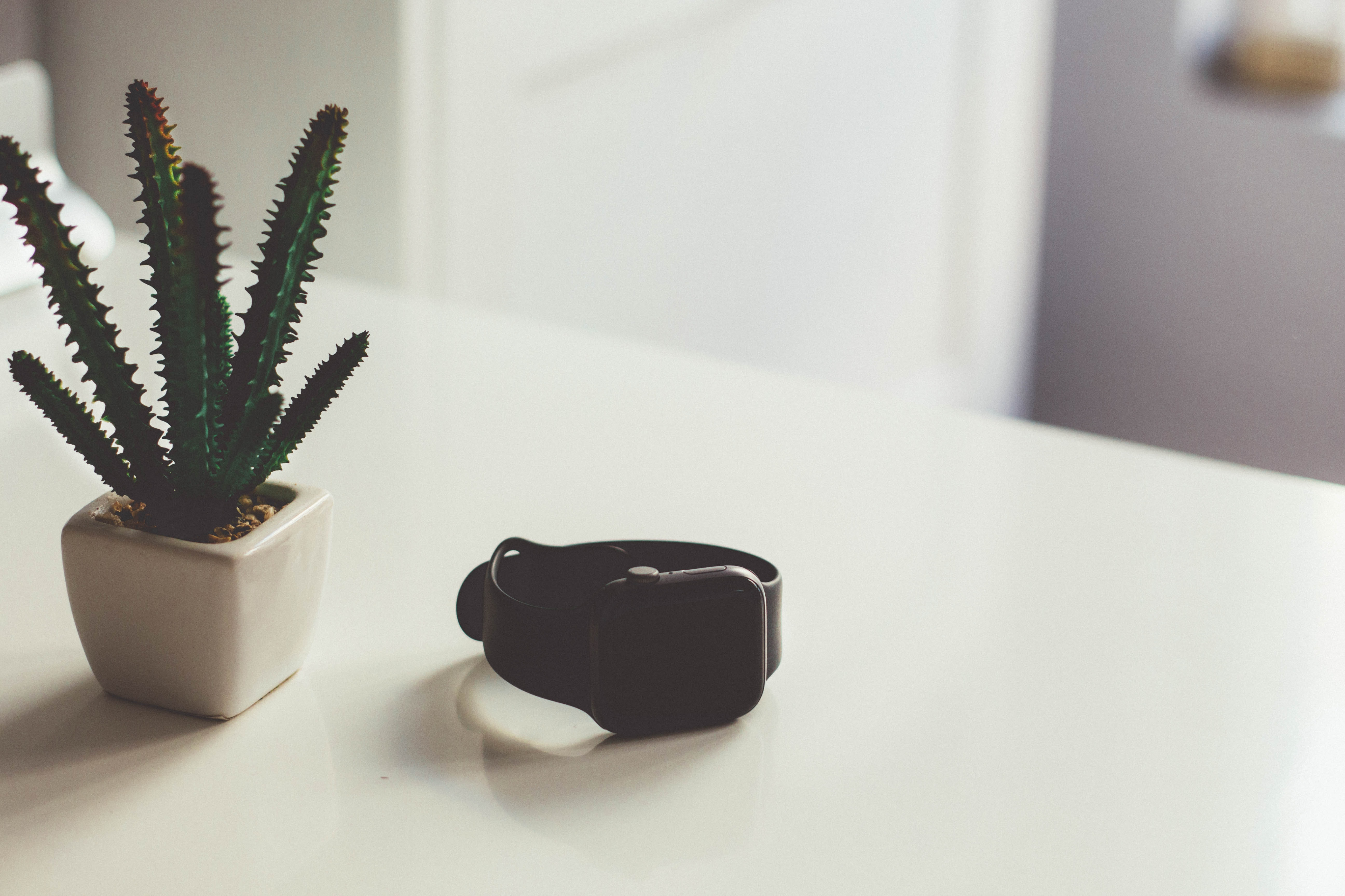 turned-off Apple Watch beside cactus plant on table