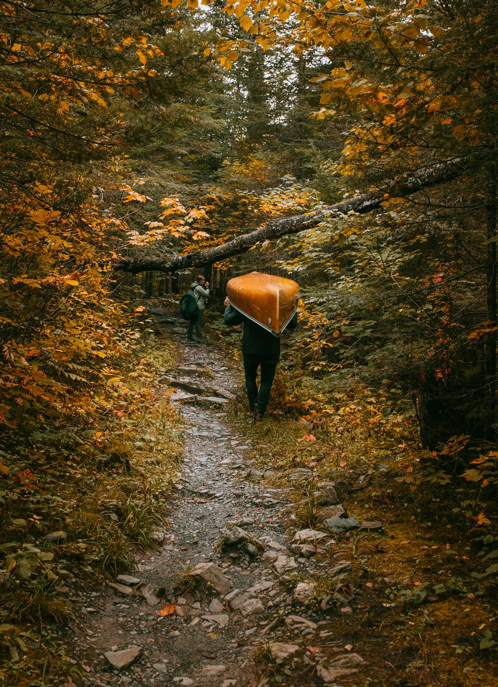 person carrying brown canoe