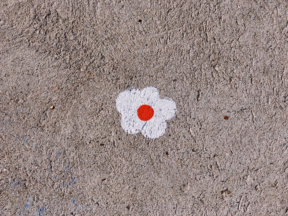 red and white flower painting