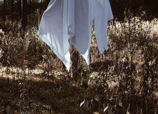 person wearing white textile under brown trees