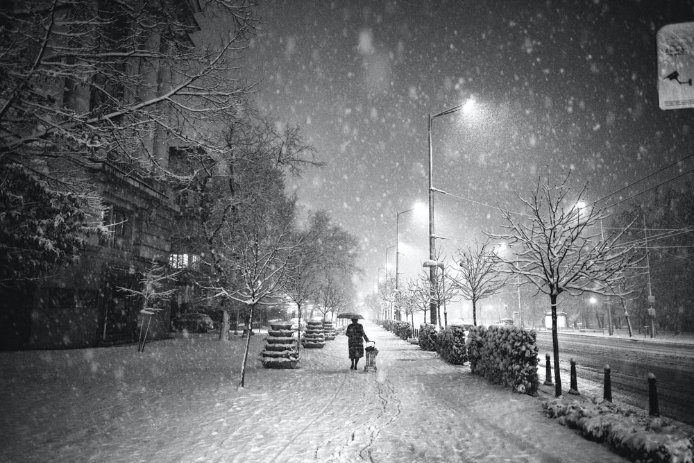 person walking on street with umbrella during snowy night