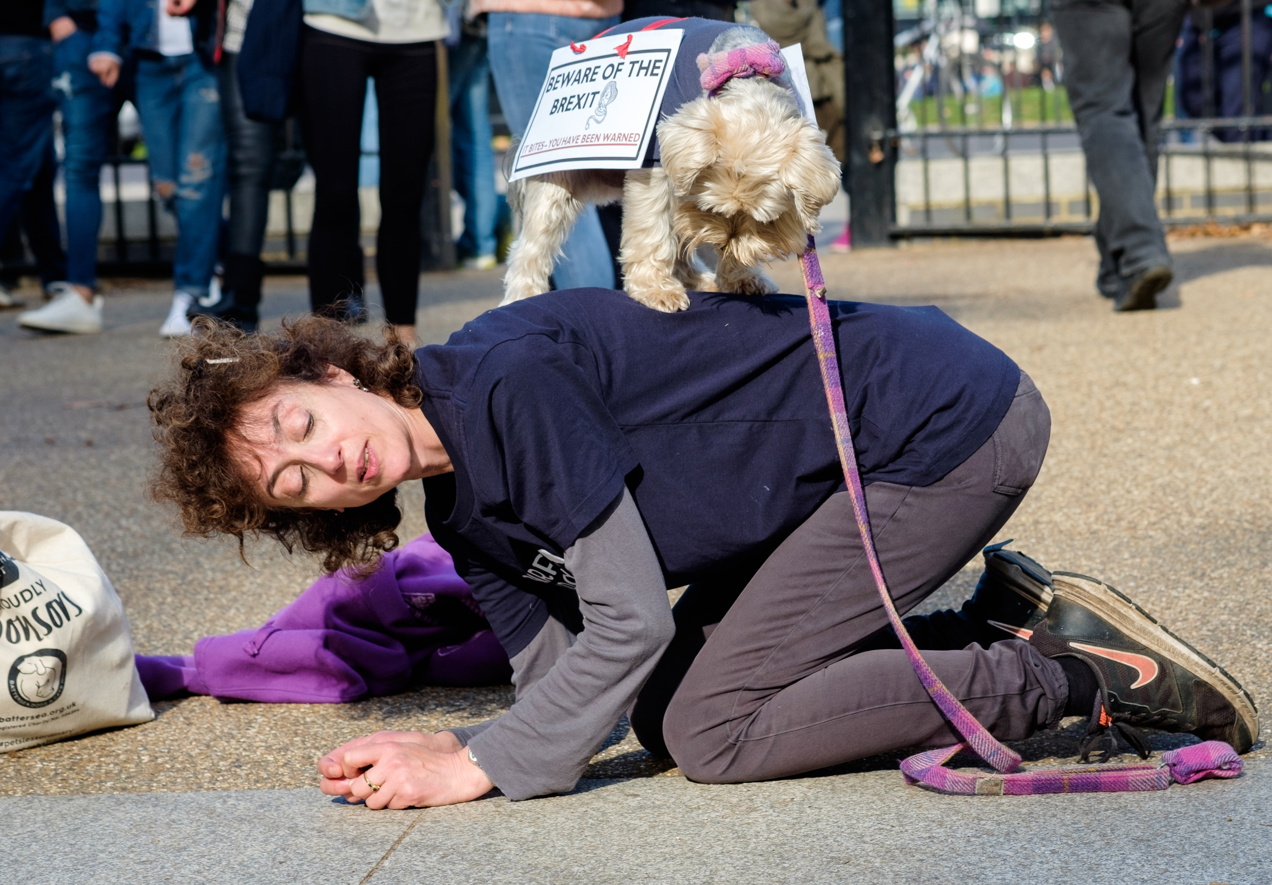 woman kneeling on cement surface with pet dog on her back