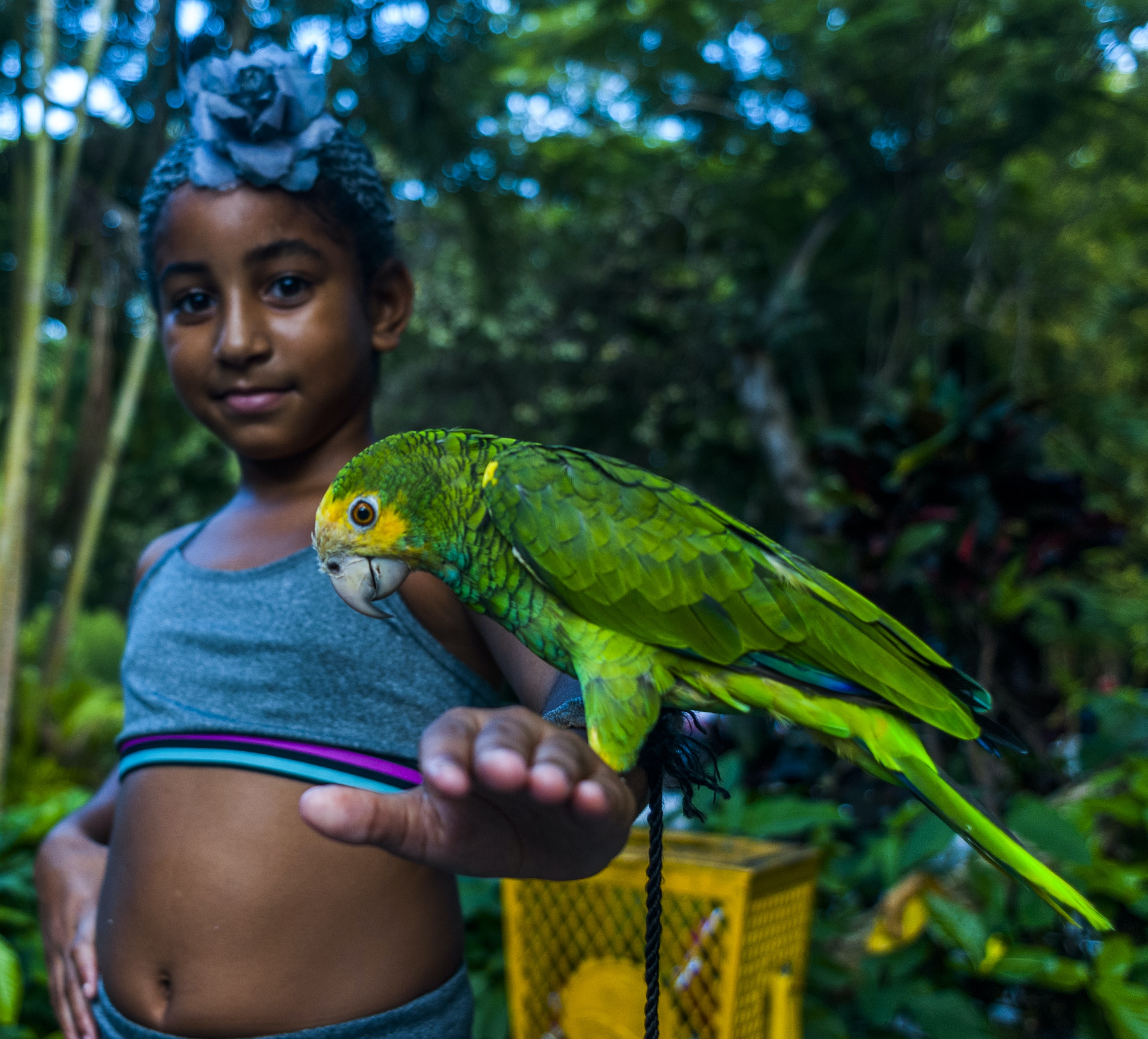 green parrot perched on girl's arm