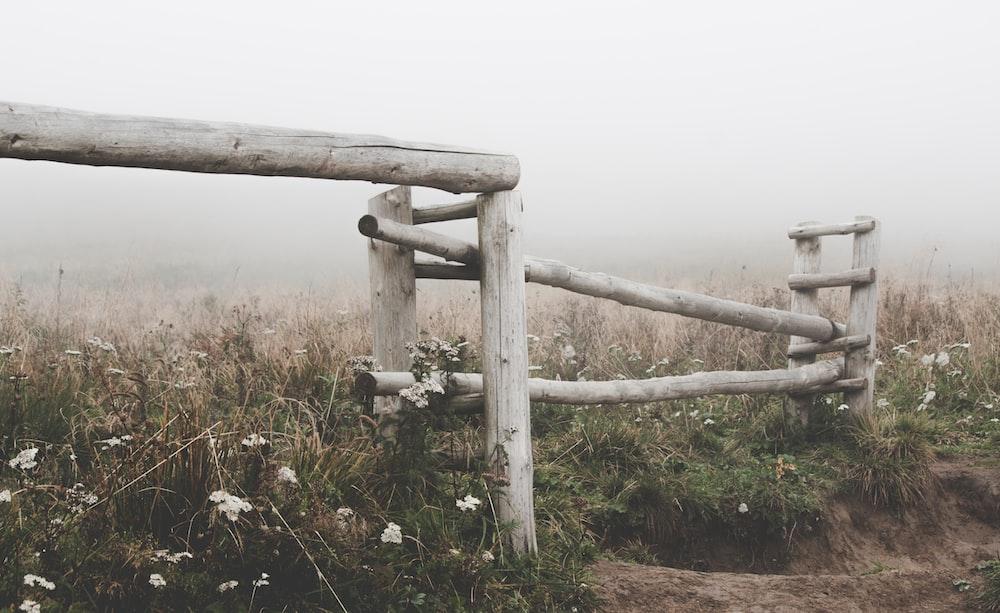 grey wooden fende on green field
