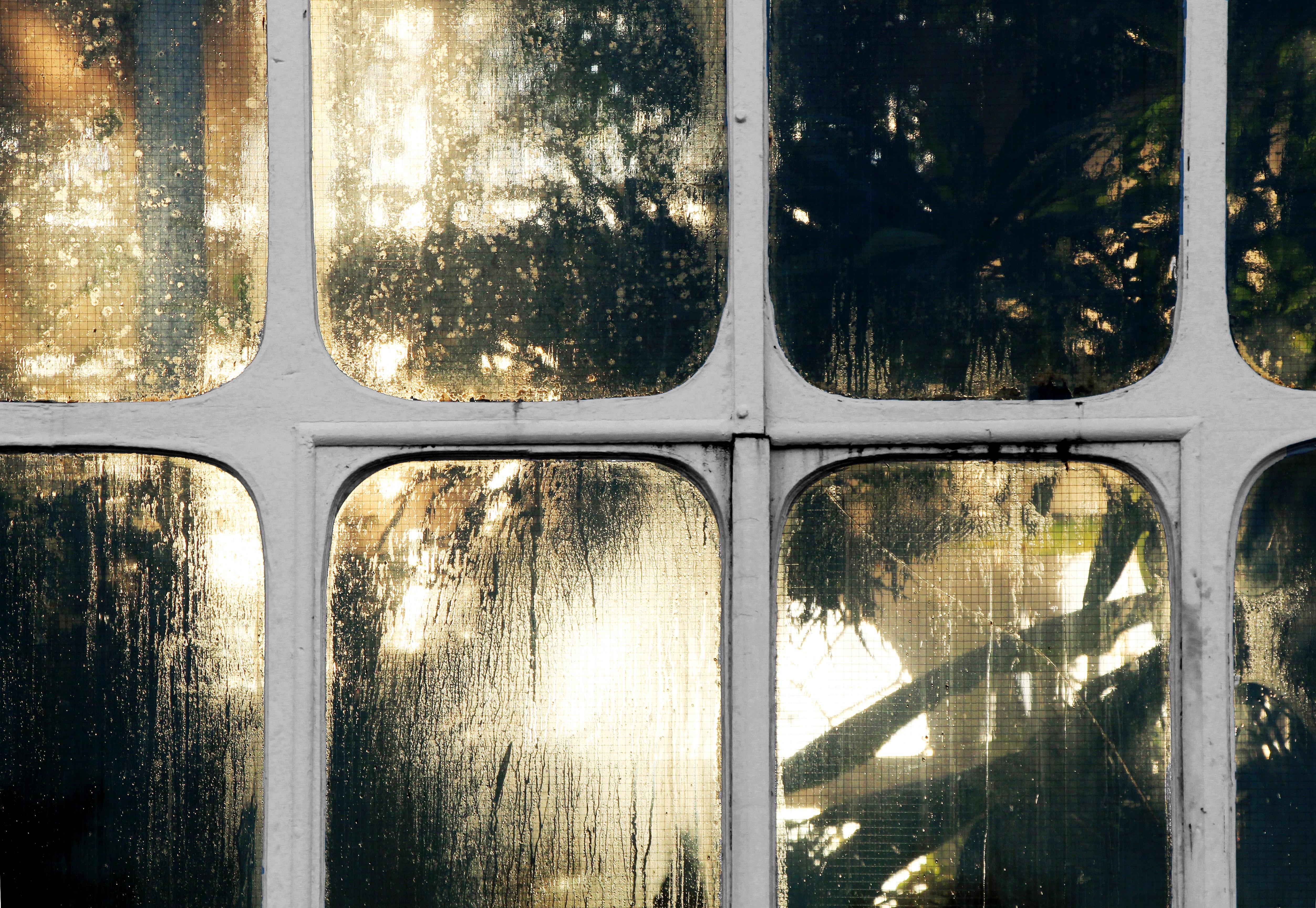 white metal framed window