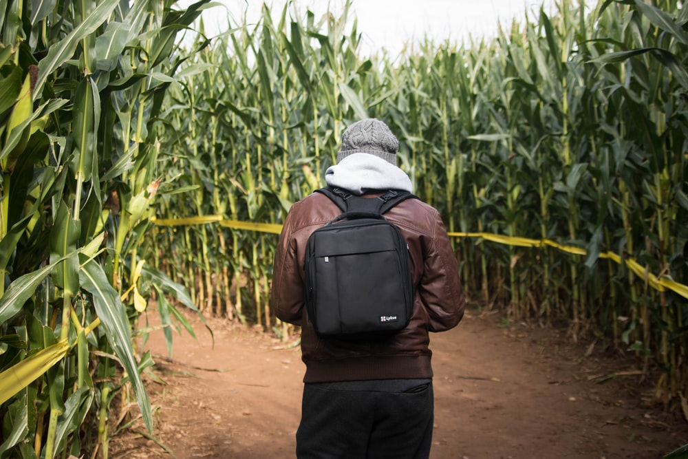 person wearing brown leather jacket and black backpack while walking on cornfield