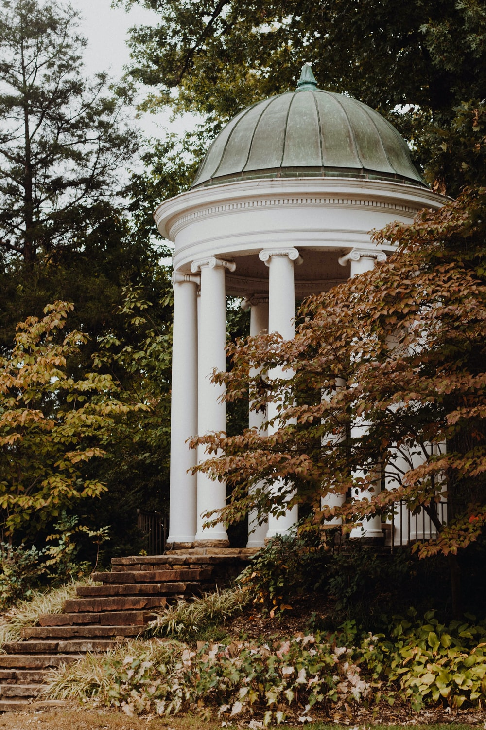 white dome gazebo surrounded with trees
