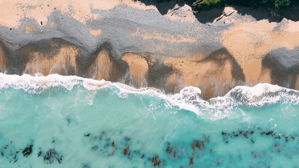 top view photography of seashore during daytime