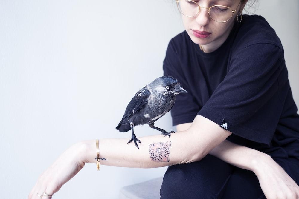 black bird on human hand