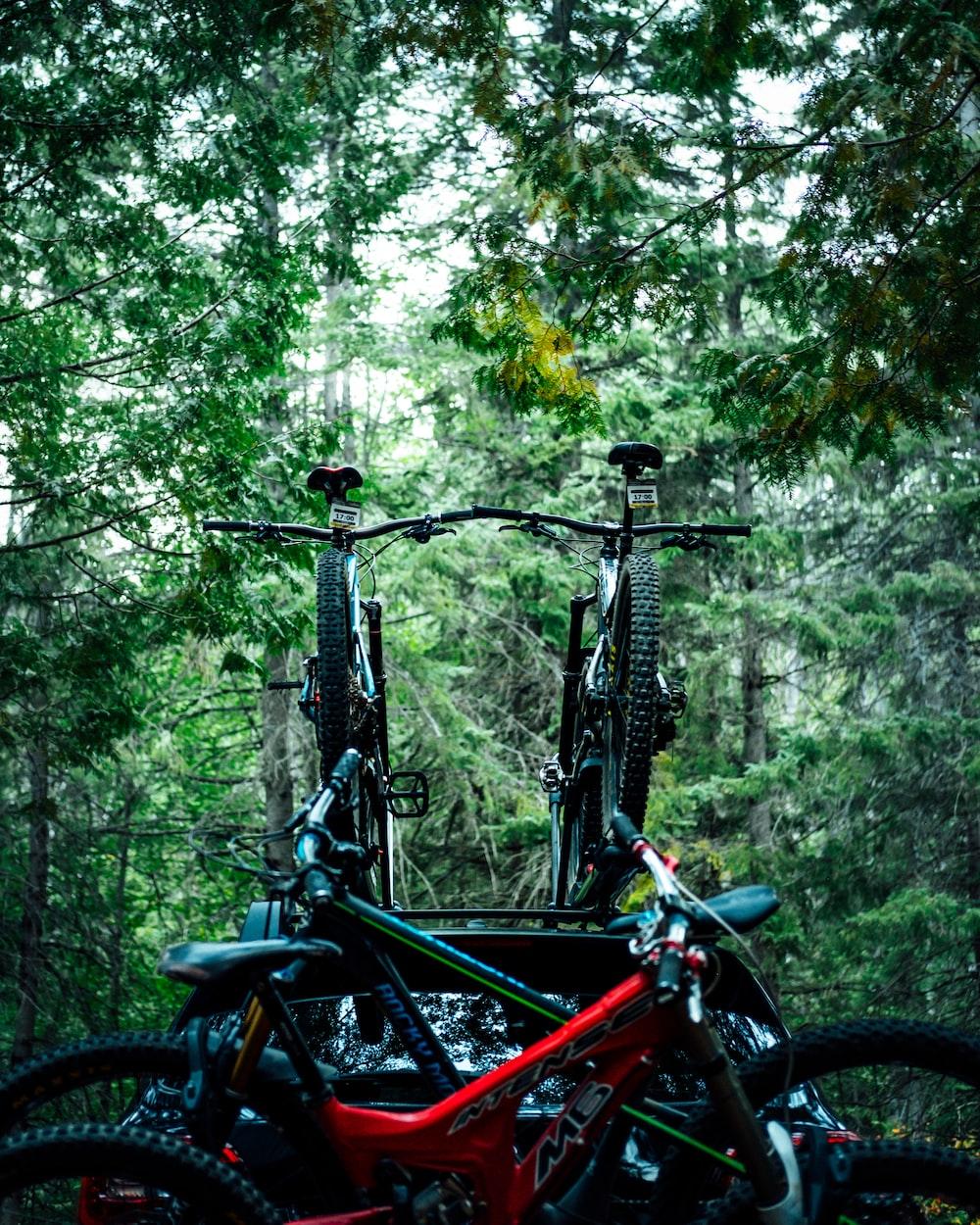 pike of bikes near trees