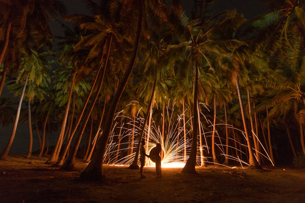 time lapse photo of optic light under palm trees at night